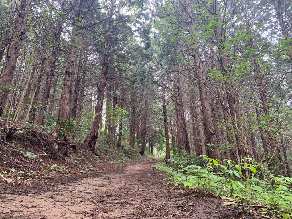 宝篋山 登山コース